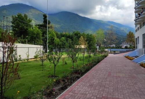 Отель Европа Абхазия, территория, внешний вид
